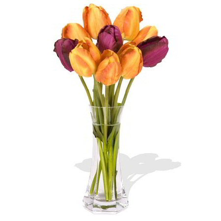 Image of Playful Tulips